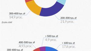 Struktyra portfela kredytowego (infografika Dariusz Gąszczyk)