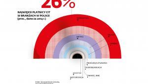 Najwięksi płatnicy CIT w branżach w Polsce