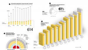 Wielkość firm z udziałem kapitały niemieckiego w Polsce, struktura wymiany towarów