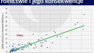 Przerost zatrudnienia w polskim rolnictwie i jego konsekwencje