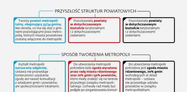 Projekty metropolitalne