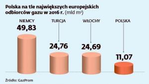 Polska na tle największych odbiorców gazu w Europie