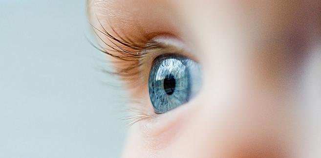 dziecko, oko, oczy, wzrok
