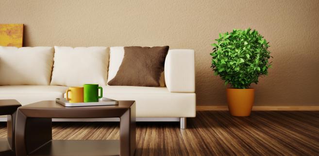 mieszkanie, kanapa, nieruchomości