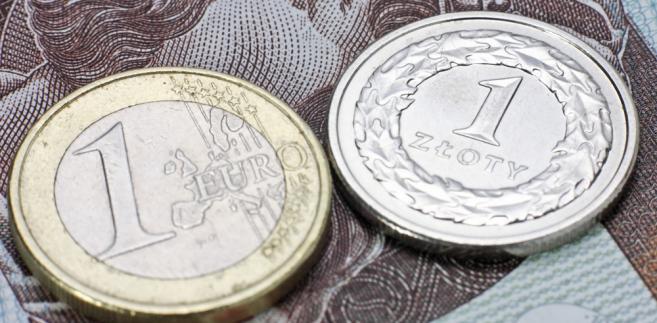 Złoty i euro, fot. Roobcio